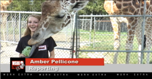WSRH EXTRA Reporter with Giraffe